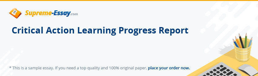 Critical Action Learning Progress Report