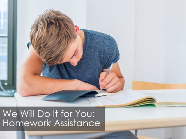 We will Do It for You: Homework Assistance